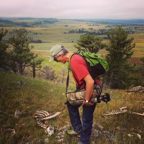 Hannah Jaicks_Country Roads_Wolf Kill_Elk Carcass